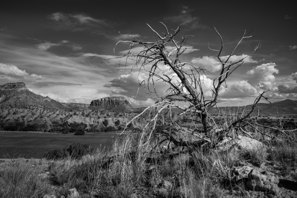 Gallery 183 - Ghost Ranch