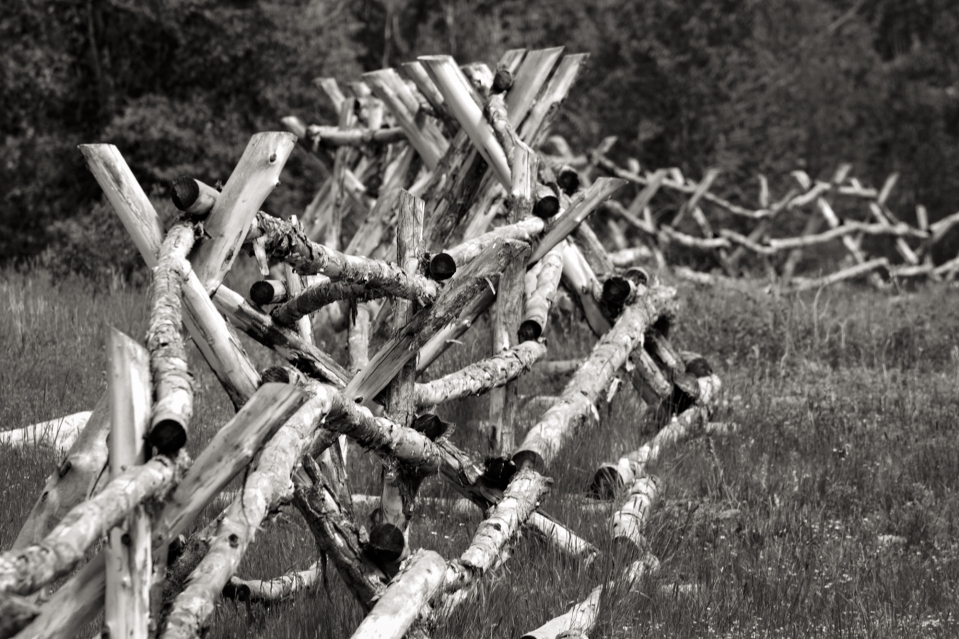 Gallery 43 - Fence Line