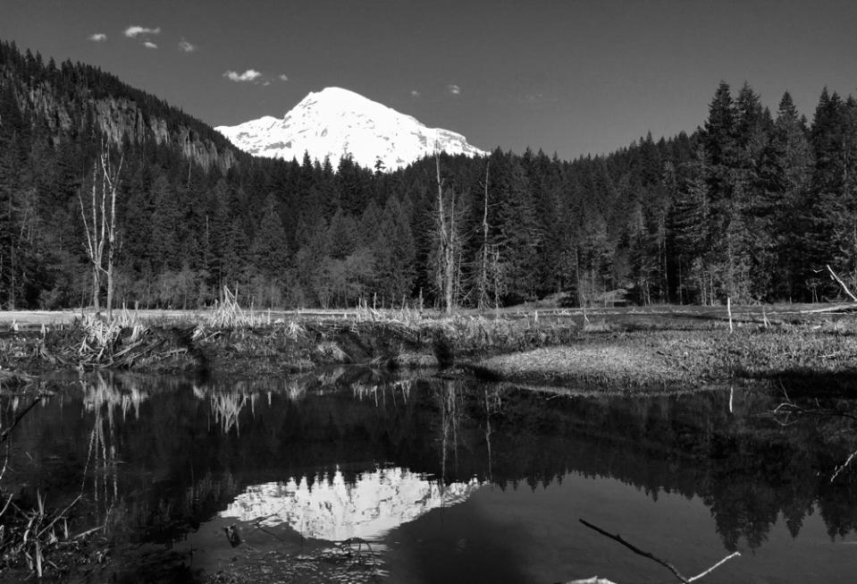 Mount Rainier 5C